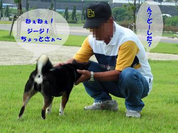 Photo_329