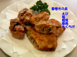 Photo_381