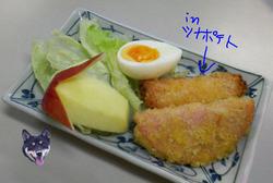 Photo_467